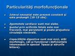 particularit i morfofunc ionale6