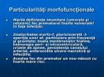 particularit i morfofunc ionale9