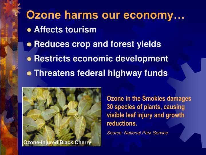 Ozone harms our economy…