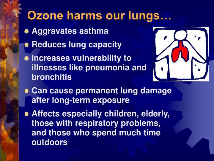 Ozone harms our lungs…