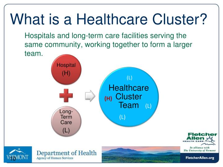 What is a Healthcare Cluster?