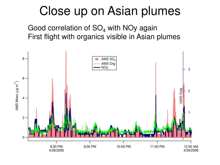 Close up on Asian plumes