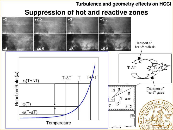 Turbulence and geometry effects on HCCI