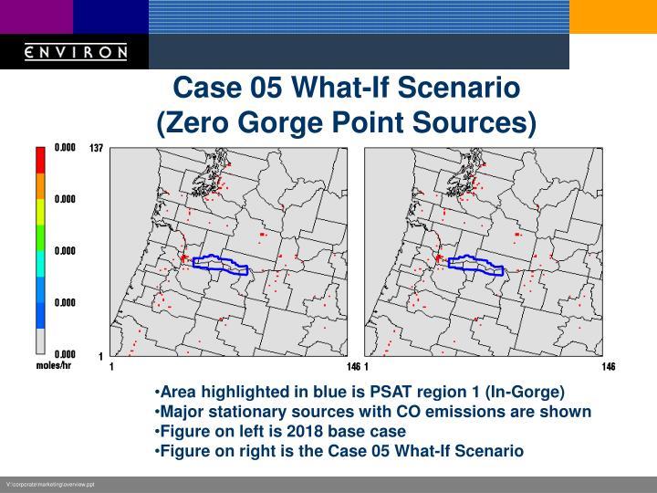 Case 05 What-If Scenario