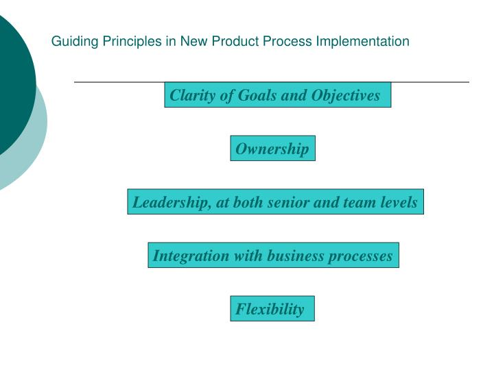 Guiding Principles in New Product Process Implementation