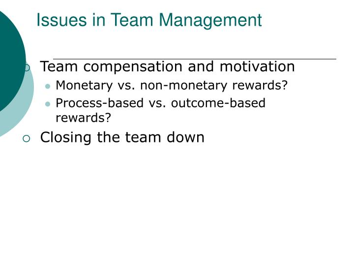 Issues in Team Management