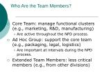 who are the team members