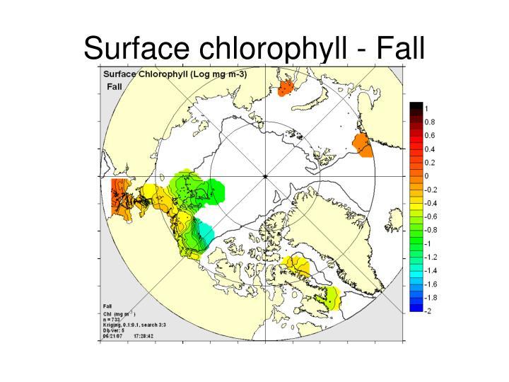 Surface chlorophyll - Fall