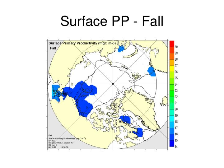 Surface PP - Fall