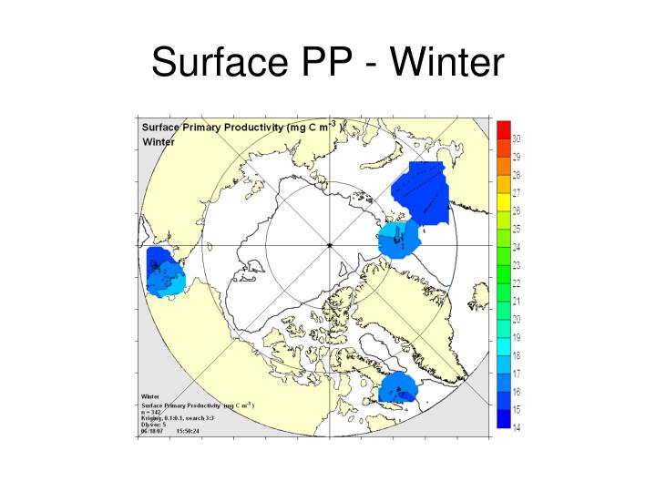 Surface PP - Winter