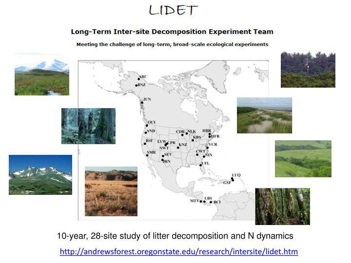 10-year, 28-site study of litter decomposition