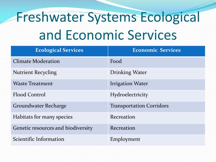 Freshwater Systems Ecological and Economic Services