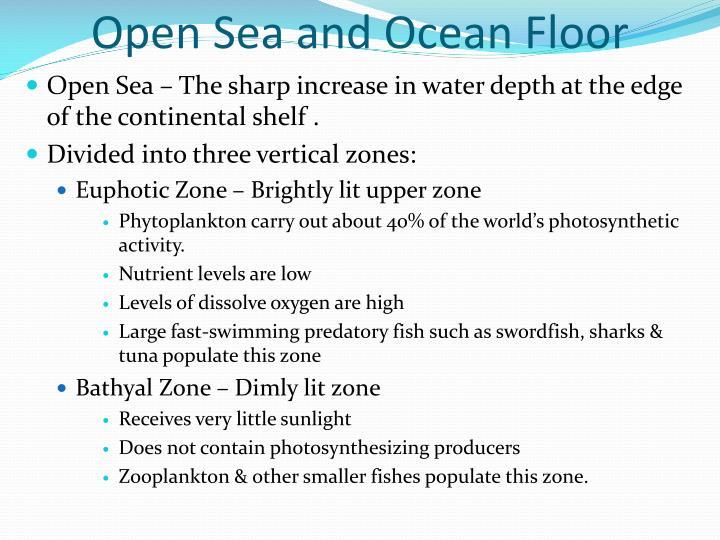 Open Sea and Ocean Floor