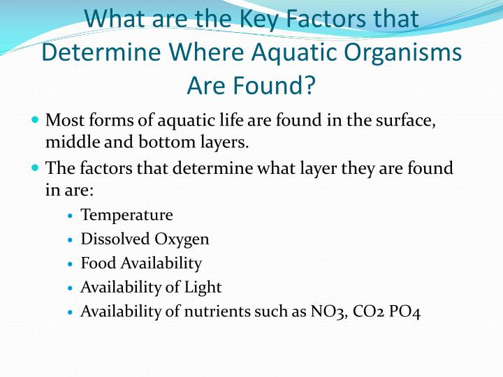 What are the Key Factors that Determine Where Aquatic Organisms Are Found?
