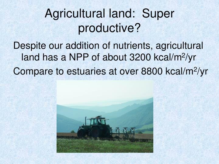 Agricultural land:  Super productive?