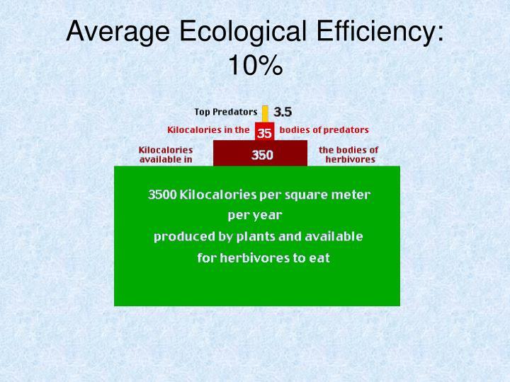 Average Ecological Efficiency:  10%