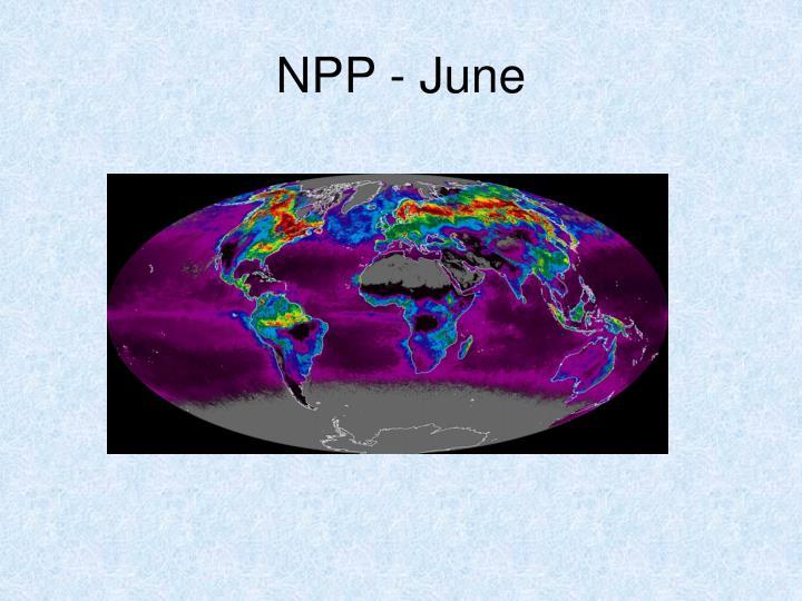 NPP - June