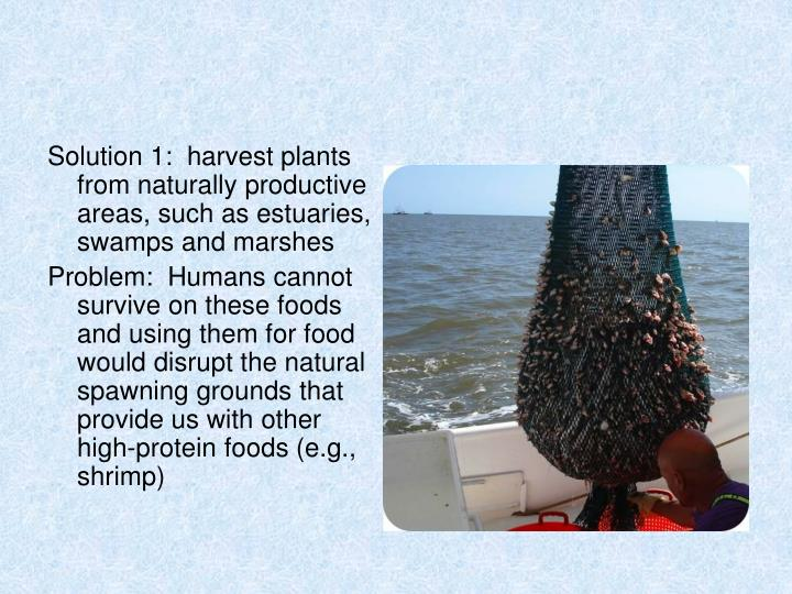Solution 1:  harvest plants from naturally productive areas, such as estuaries, swamps and marshes