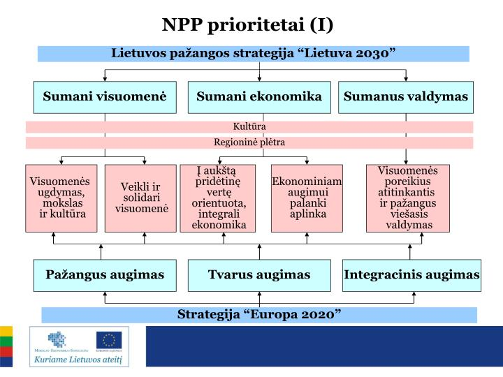 NPP prioritetai (I)