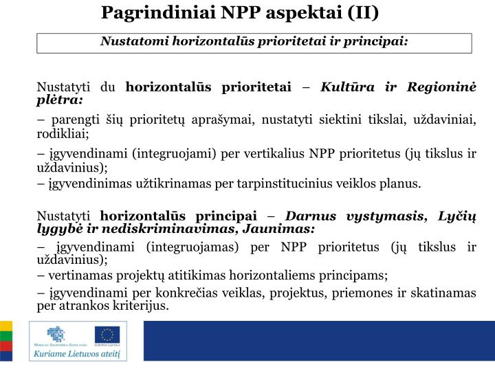 Pagrindiniai NPP aspektai (II)