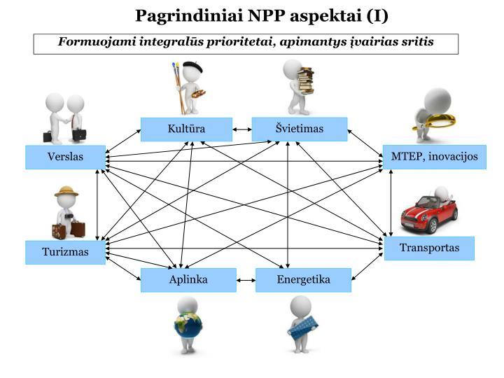 Pagrindiniai NPP aspektai (I)