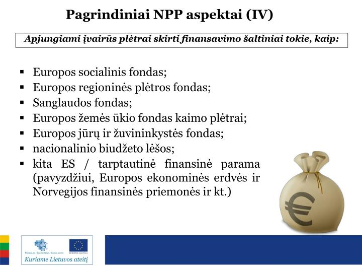 Pagrindiniai NPP aspektai (IV)