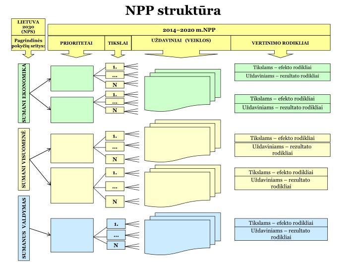 NPP struktūra