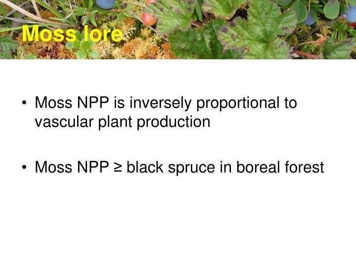 moss lore