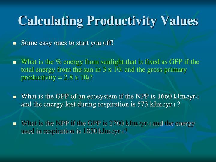 Calculating Productivity Values