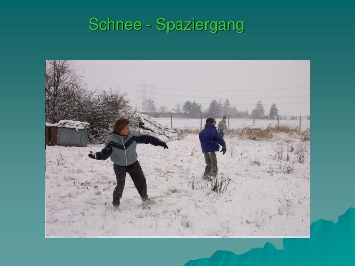 Schnee - Spaziergang