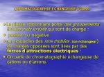 chromatographie changeuse d ions2