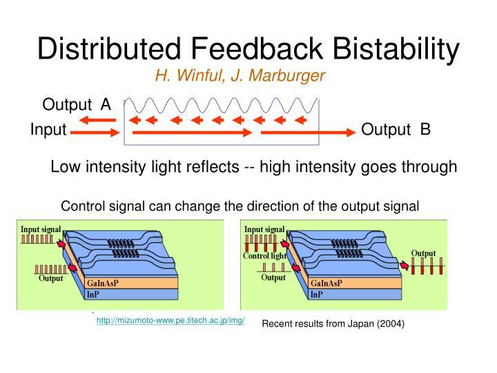Distributed Feedback Bistability
