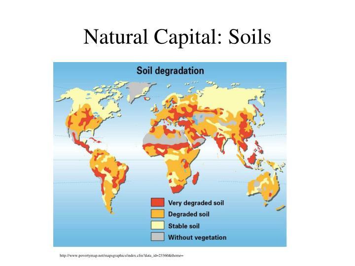 Natural Capital: Soils