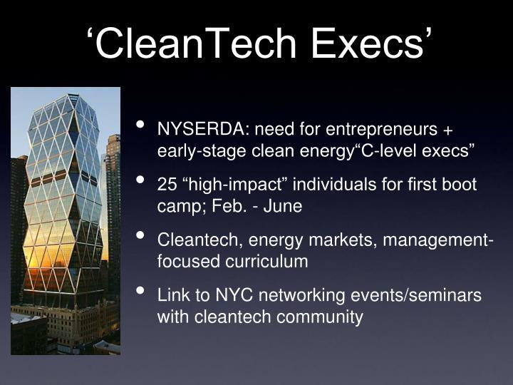 'CleanTech Execs'