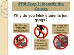 ppa step 3 identify the causes