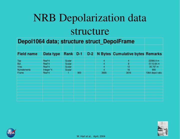 NRB Depolarization data structure