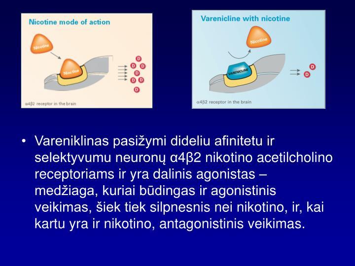 Vareniklinas pasižymi dideliu afinitetu ir selektyvumu neuronų