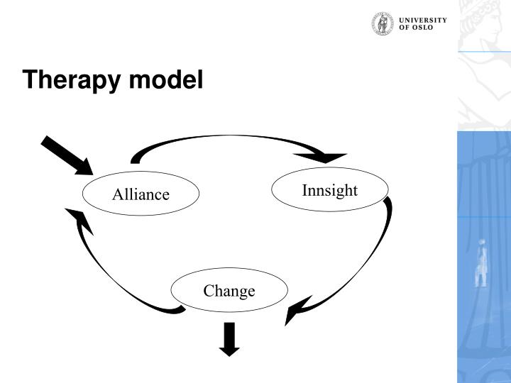 Therapy model