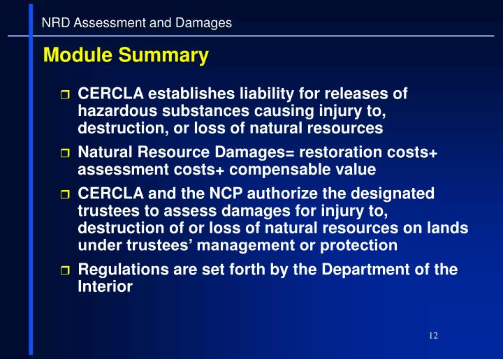 NRD Assessment and Damages
