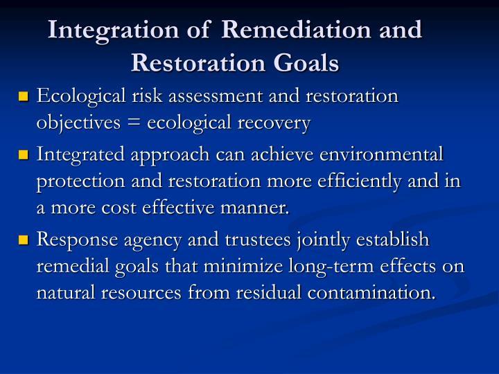 Integration of Remediation and Restoration Goals