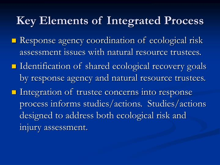 Key Elements of Integrated Process