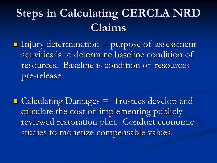 Steps in Calculating CERCLA NRD Claims