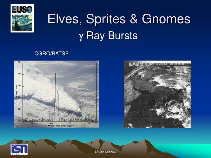 Elves, Sprites & Gnomes