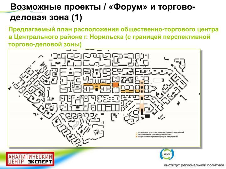 Возможные проекты / «Форум» и торгово-деловая зона (1)