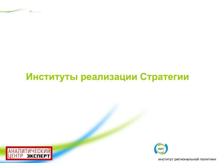 Институты реализации Стратегии
