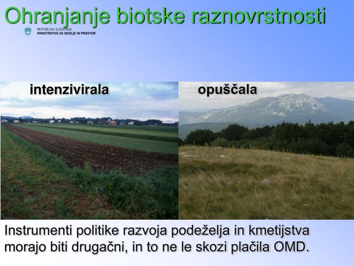 Znotraj Slovenije kmetijstvo deluje v drugačnih razmerah, kjer se je v preteklosti kmetijska raba pretežno: