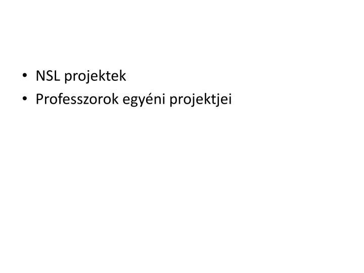 NSL projektek
