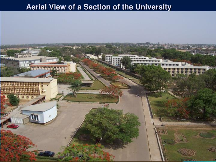Aerial View of a Section of the University