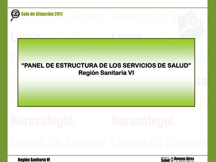 """""""PANEL DE ESTRUCTURA DE LOS SERVICIOS DE SALUD"""""""