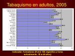 tabaquismo en adultos 2005